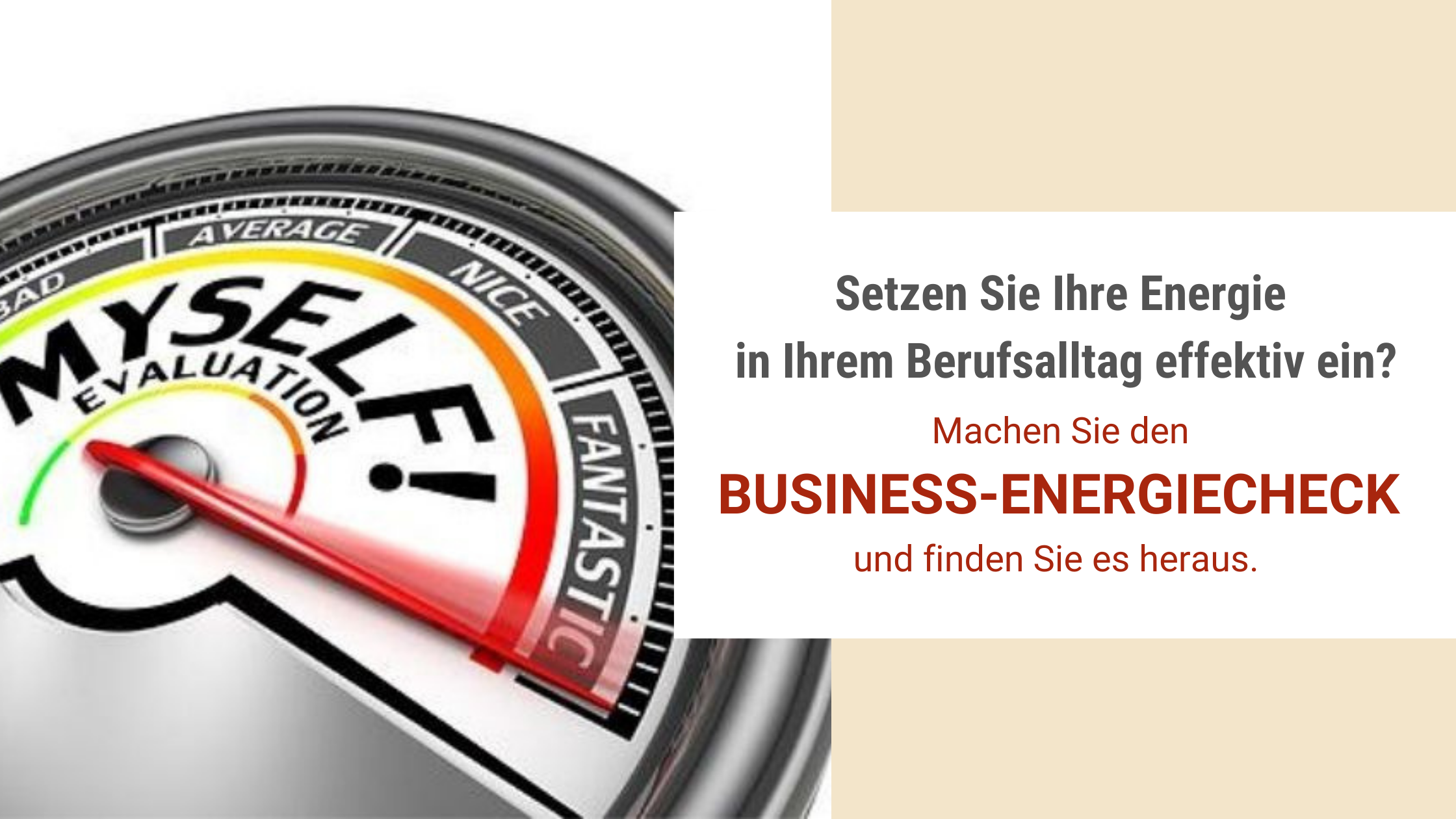 bild business energiecheck