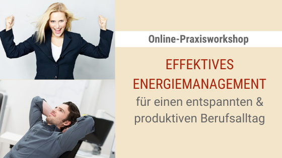 Workshop Effektives Energiemanaement